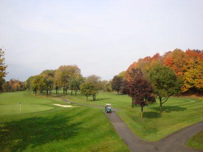 Markland Wood