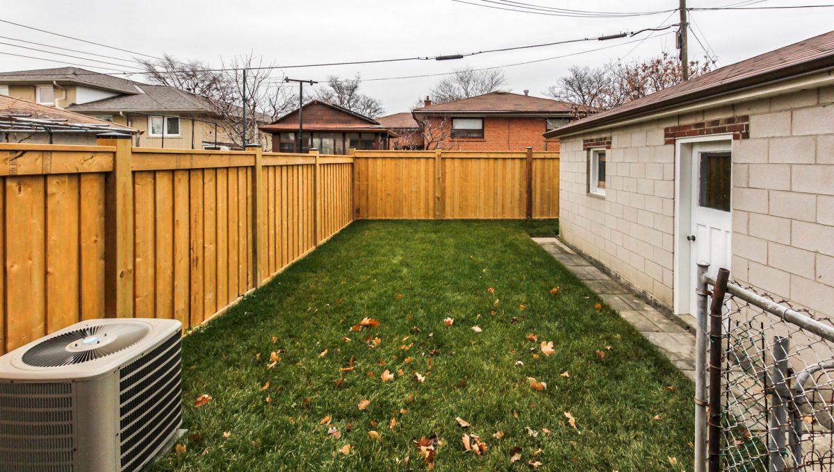 56_backyard1
